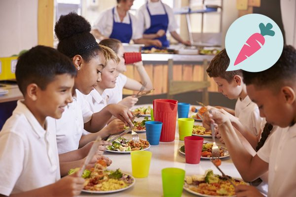 Schulen und Kitas ~ Ernährung, Fitness, Beratung im Raum Frankfurt ~ Sarah Celine